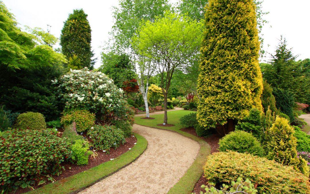 Landscaping Hoschton GA | Is Your Grass Fertile?