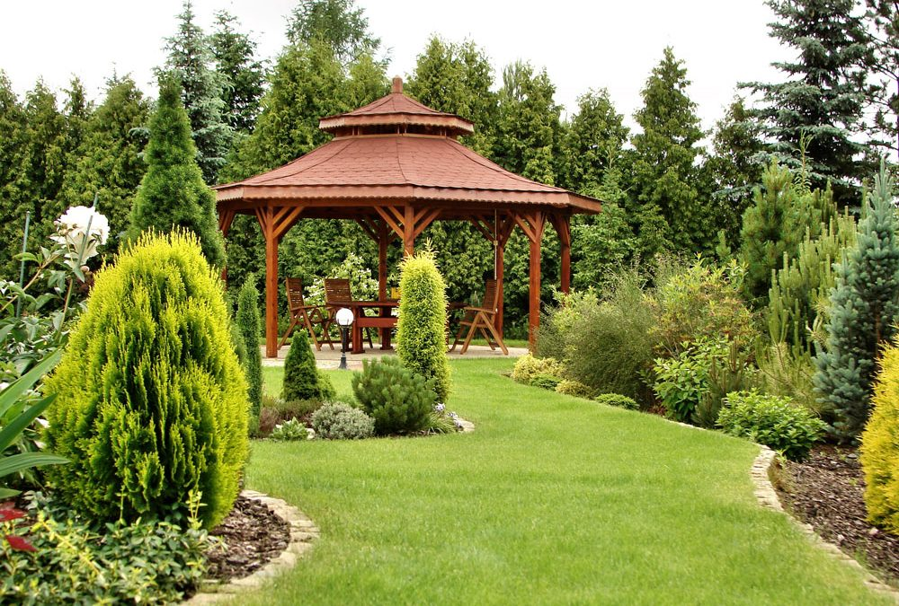 Best Landscaping Hoschton GA | Backyard A Little Crazy?