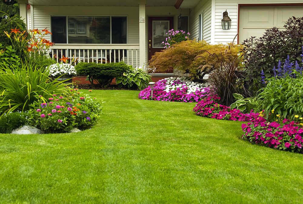 Landscaping Hoschton GA | Here to get it done